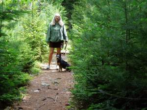A summer walk in the Maine woods.