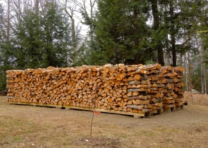 Firewood stacked and ready for the winter